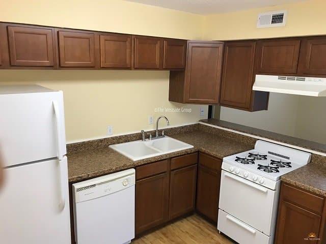 austin apartments rentals