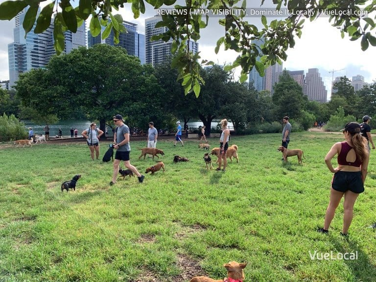 dog parks in austin downtown